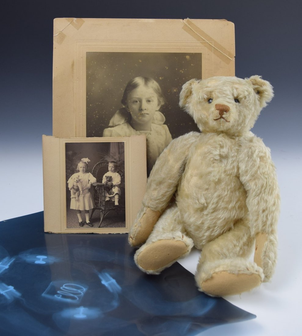 Important 1906 Steiff Pre-War Teddy Bear