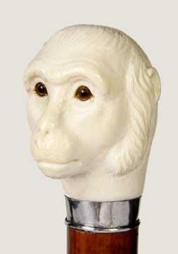 14: Massive Ivory Primate Dress Cane-Circa 1925-A finel