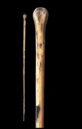 18: 18. Bull Penis Cane-Late 19th Century-As far bull p