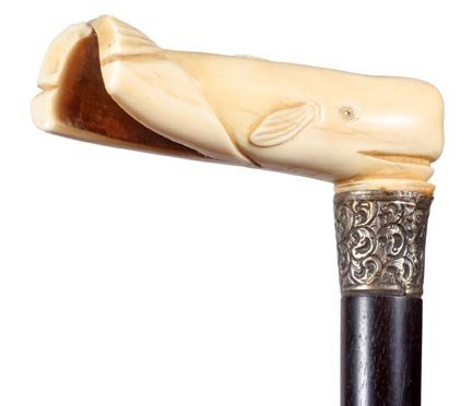 13. Ivory Whale Cane- 19th Century-A substantial whale