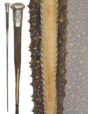 17: 17. Stingray Tail Cane-19th Century-Fashioned of th
