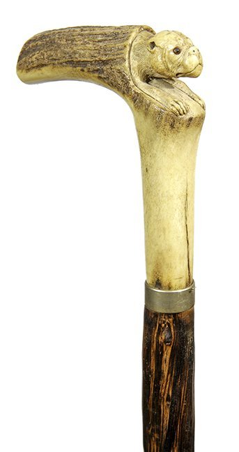 8. Johnny Winter Cane-Ca. 1900- A carved stag bulldog