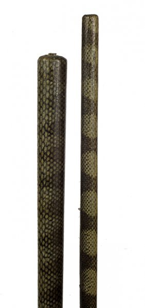 180. Two Snakeskin Shafts- Early 20th Century- Average