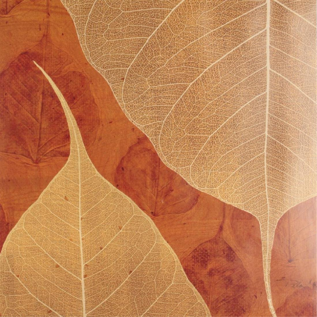 MATTED NATURAL PLANT LEAF COLLAGE