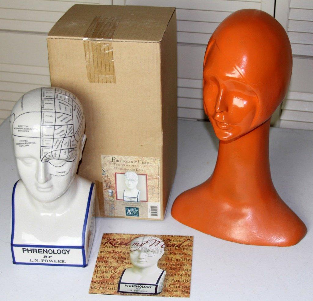 L.N. FOWLER PHRENOLOGY HEAD & DISPLAY HEAD