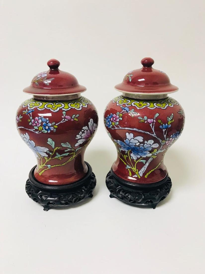 Pair of Porcelain Vase with Rosewood Base