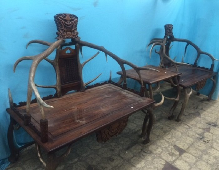 Pair Of Huanghuali And Deer Horns Lion Chairs