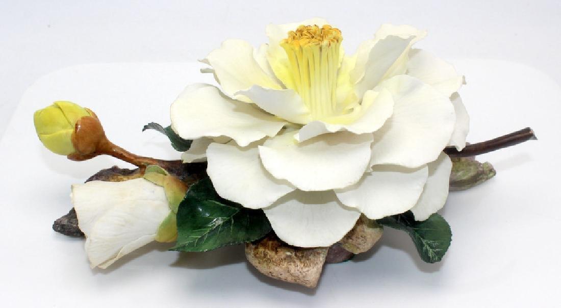 Boehm Emmett Barnes Camellia