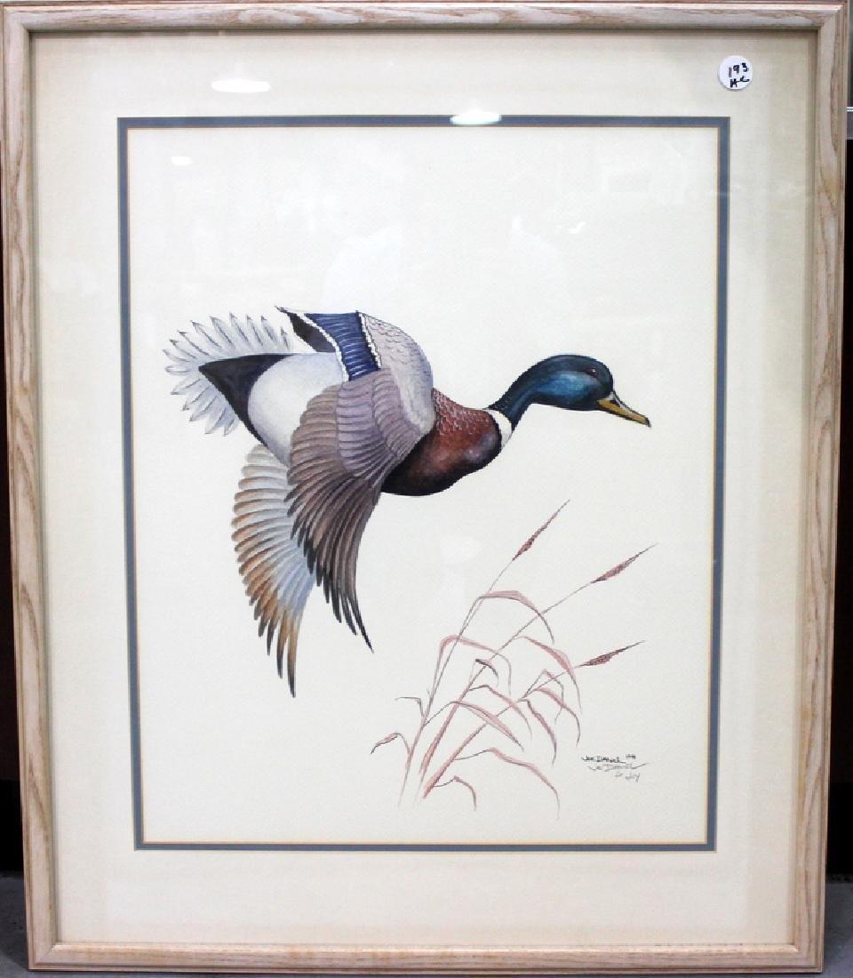 Joe Daniel Mallard Watercolor on Paper - 2