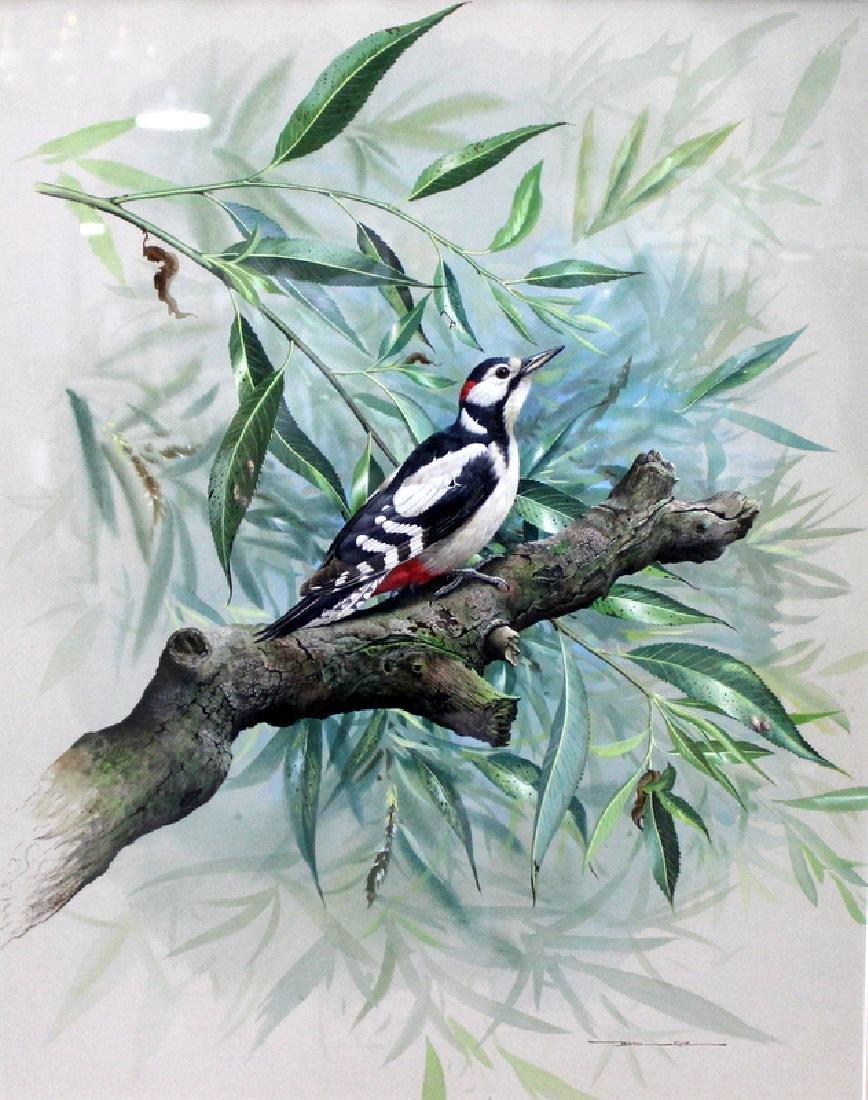 Basil Ede Watercolor Black & White Bird