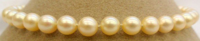 2B: 14K Y.G. Clasp & Cultured Pearl Necklace