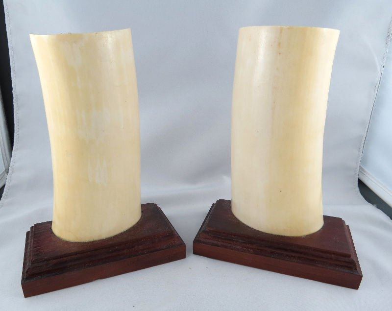 Pair of Finely Carved Chinese Ivory Wristrest - 4