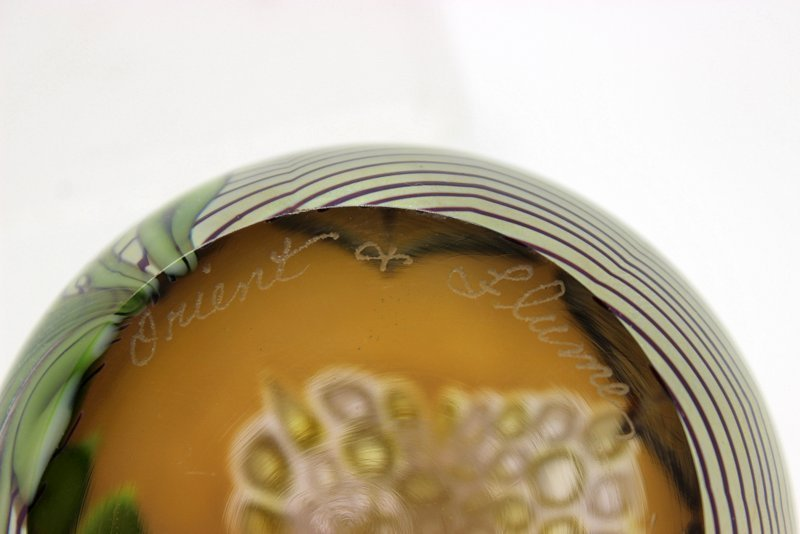 Orient & Flume Iridiscent Paperweight - 5