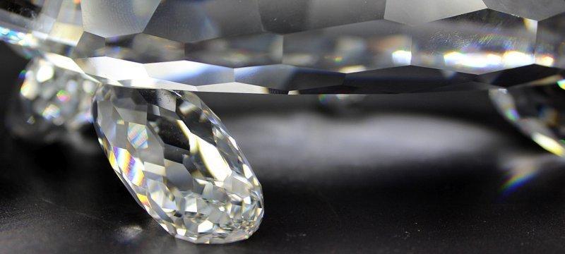 Swarovski Crystal Giant Turtle - 5