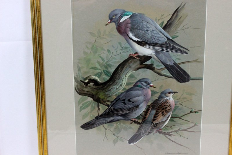 """Basil Ede Watercolor on Paper """"Three Birds in a Tree"""" - 2"""
