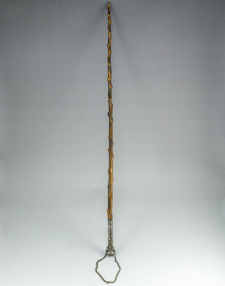 Wood and Silver Cane