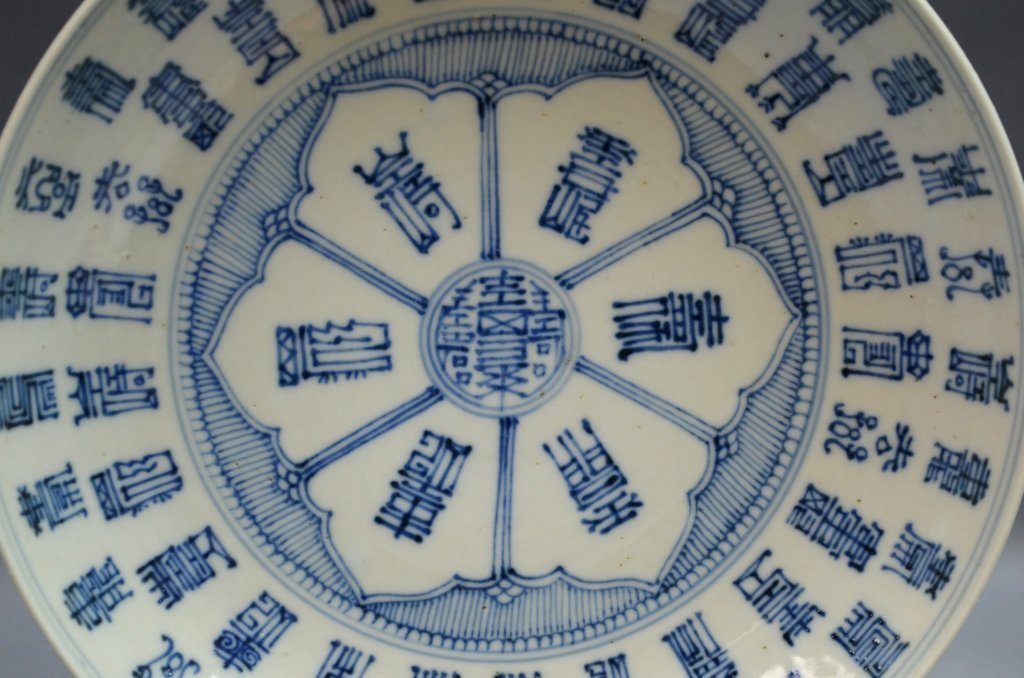 Pair of Chinese Blue and White Porcelain Plates - 2