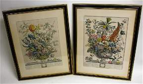 Pair of 19thC. Hand Colored Botanical Engravings