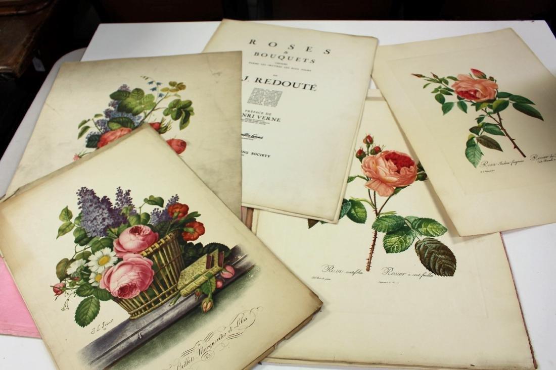 Lot of Miscellaneous Botanical Prints