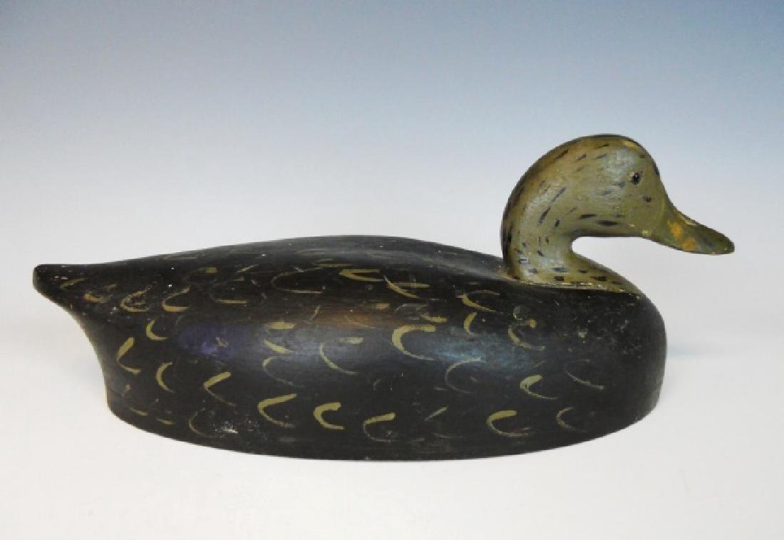Black Duck Decoy, Wildfowler