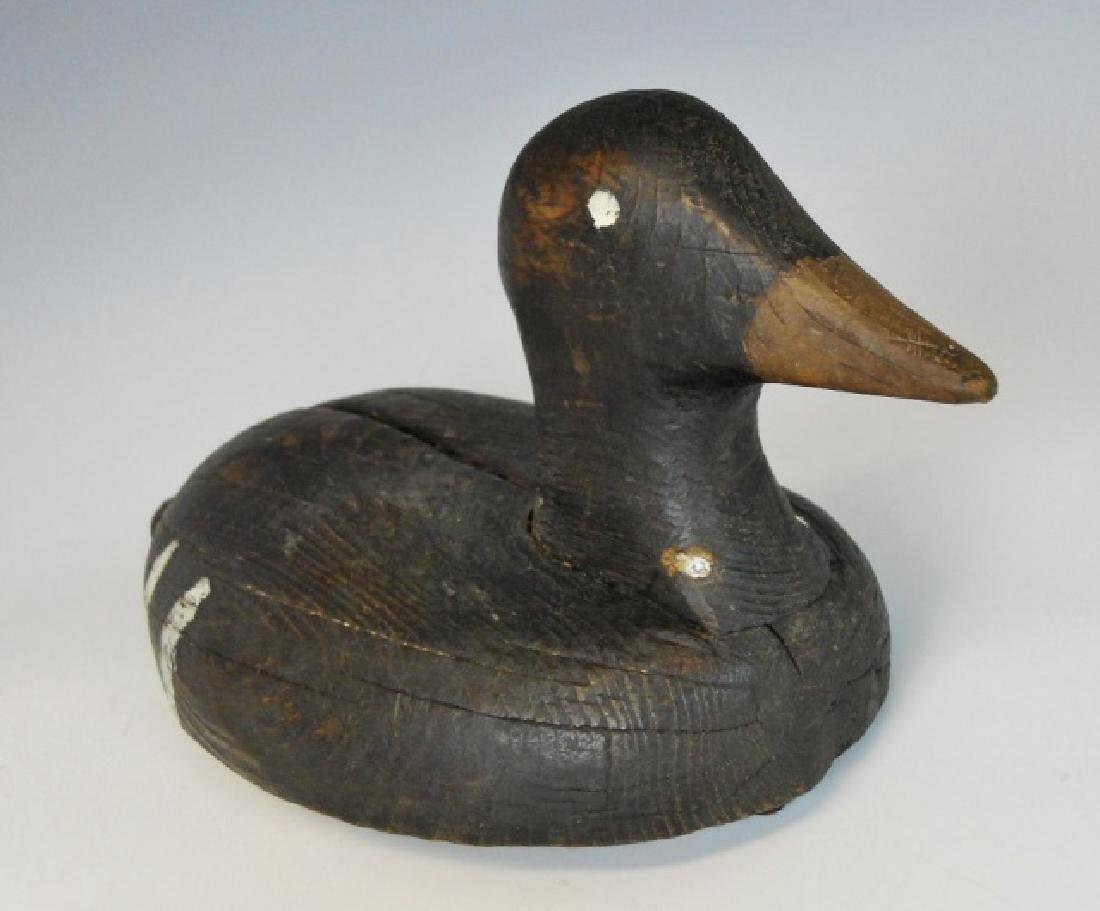 Early Hand Carved Scoter Decoy, Nova Scotia - 3