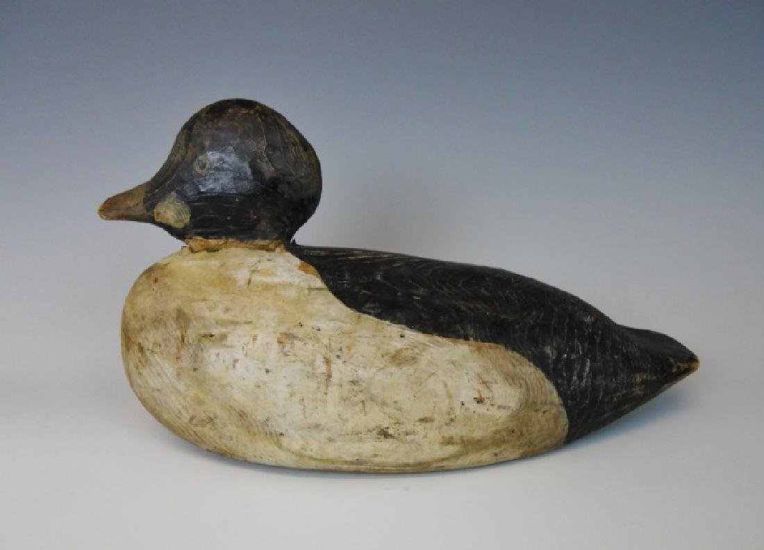 Antique Hand Painted Goldeneye Decoy, Maine - 2