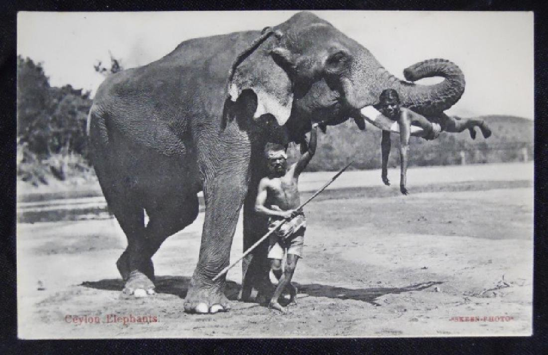 Antique International Postcards, (42pc) - 5