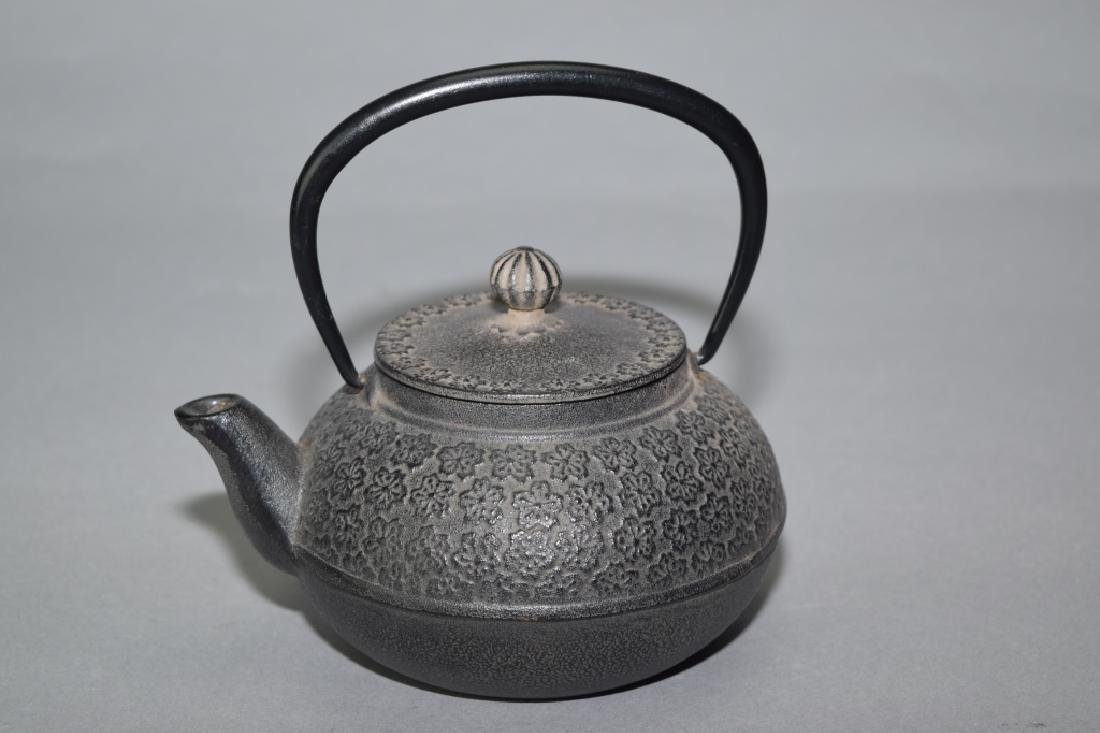 Japanese Metal Water Pot