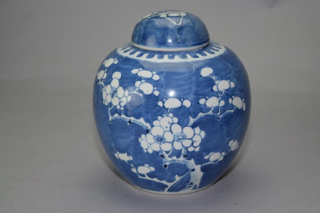 Qing Chinese Blue and White Plum Jar