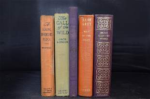 Collection of Books: The Call of the Wild