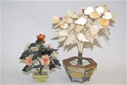 Chinese Jade Tree and Mother-of-Pearl Tree