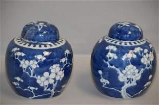 Pr. of Qing Chinese Porcelain B&W Plum Jars