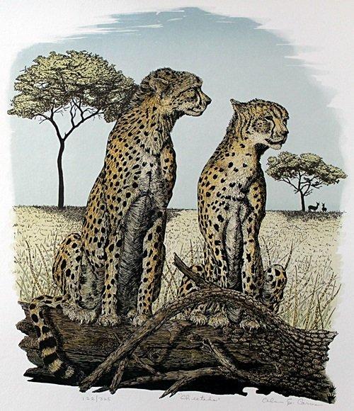 "Lithograph ""Cheetahs"" after Alan E. Carman"