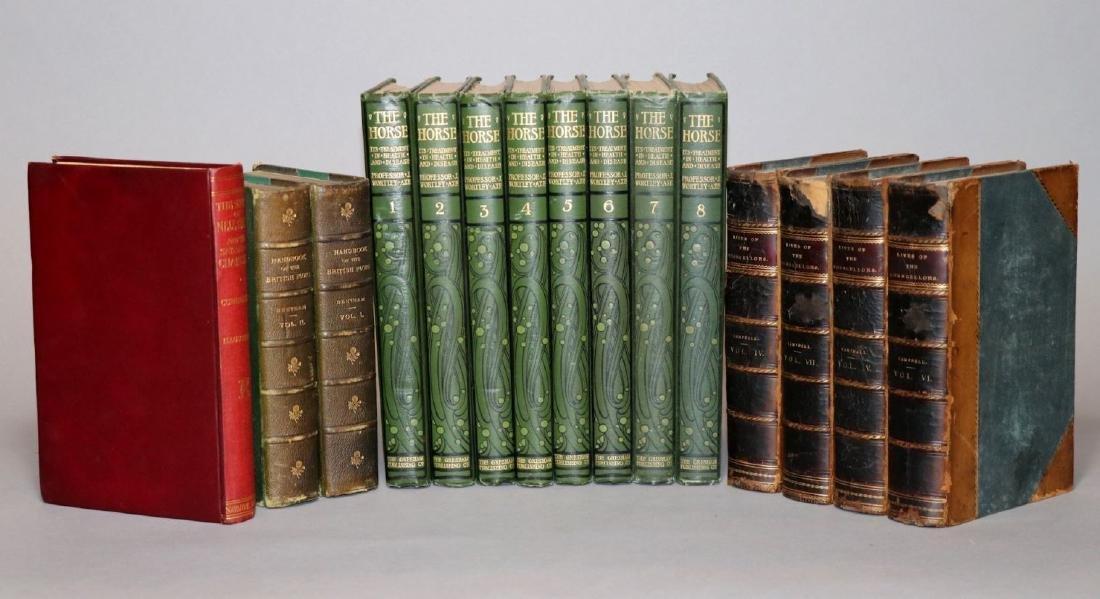 [Shelf-Lot, Horses, Flora, History]