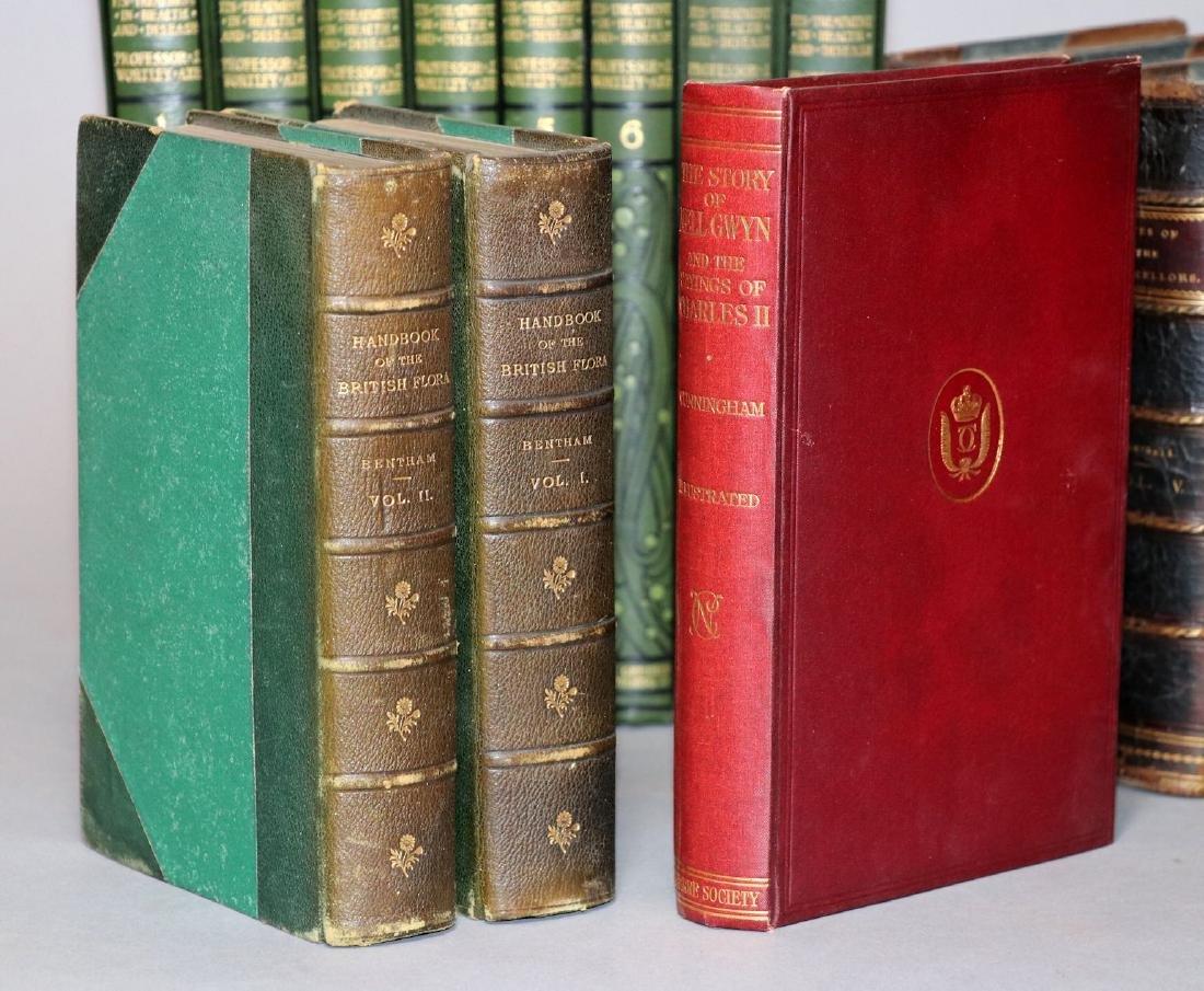 [Shelf-Lot, Horses, Flora, History] - 2