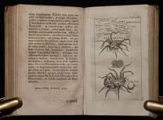 [Medicine] Baglivi. Praxi Medica, 1699