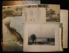 Antique Prints Lot of 53 Pieces