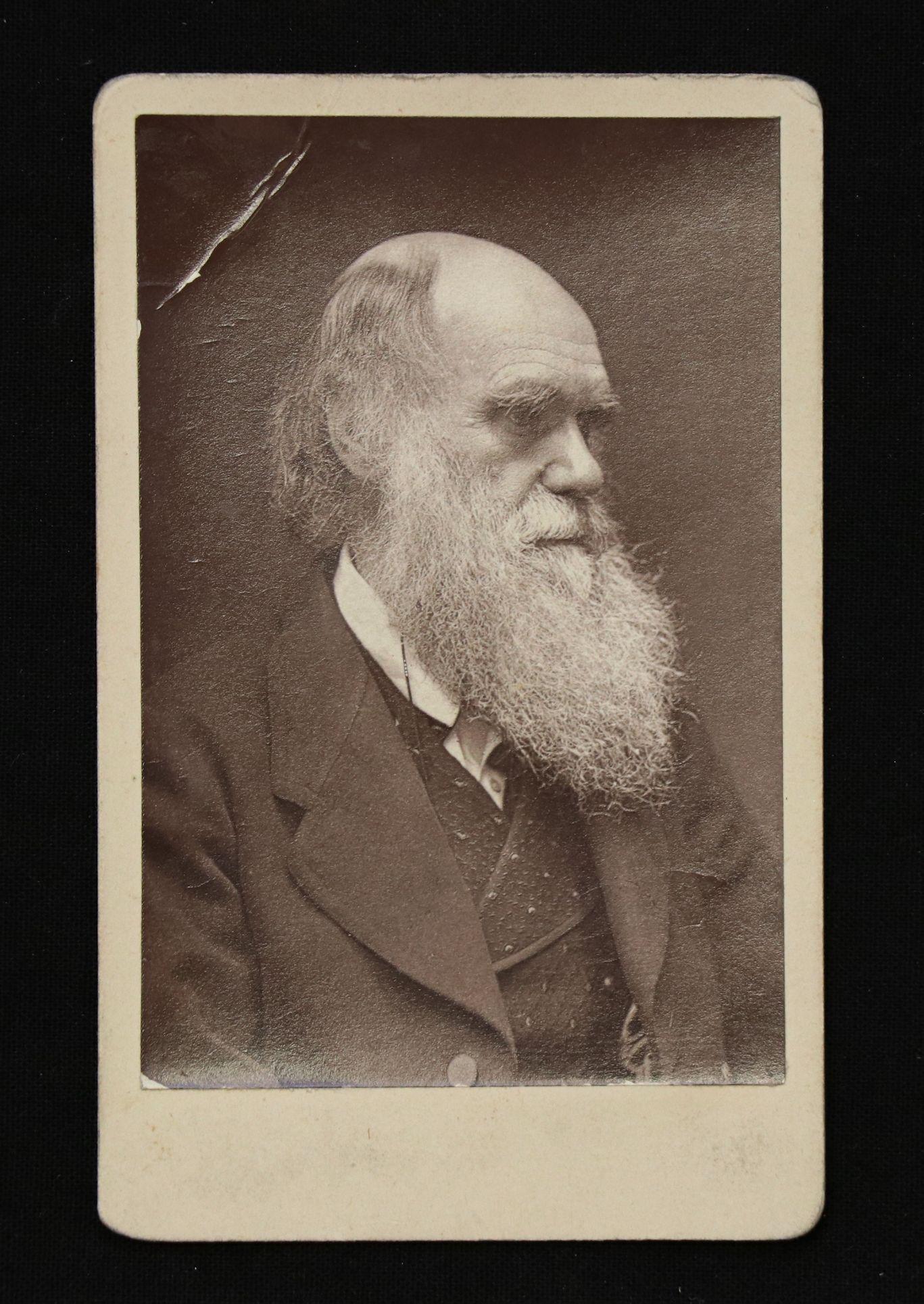 Charles Darwin Carte de Visite