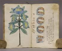 Manuscript, Calligraphy/Penmanship