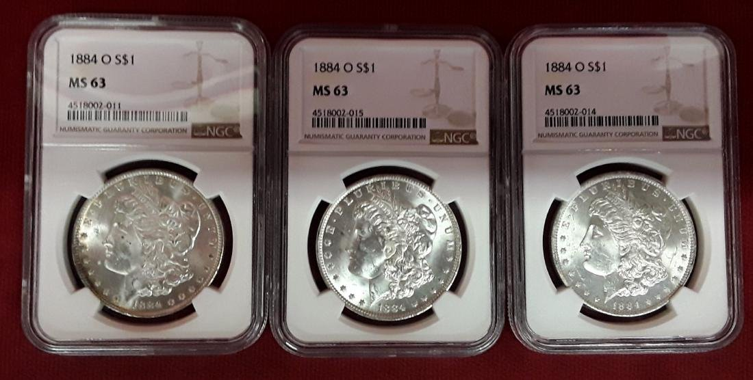 Lot of 3 1884-O MS 63 Morgan Dollars