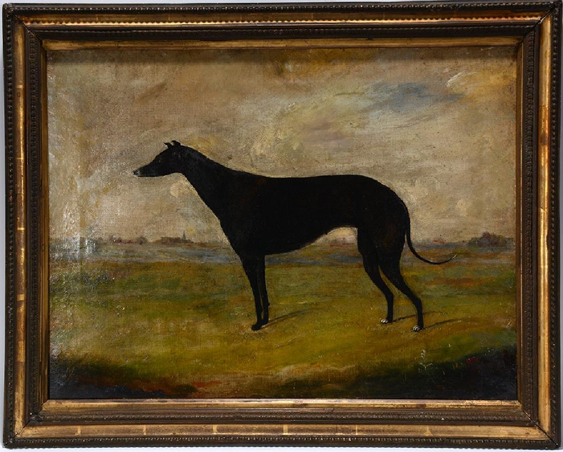 Anonymous Greyhound Portrait.