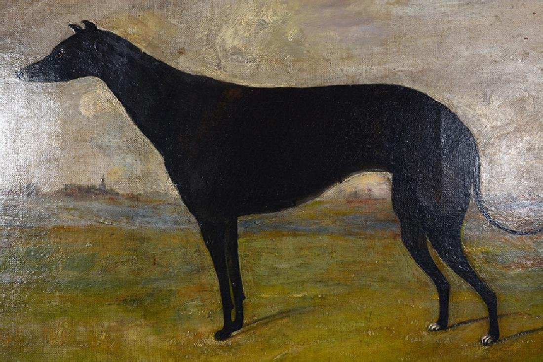 Anonymous Greyhound Portrait. - 2