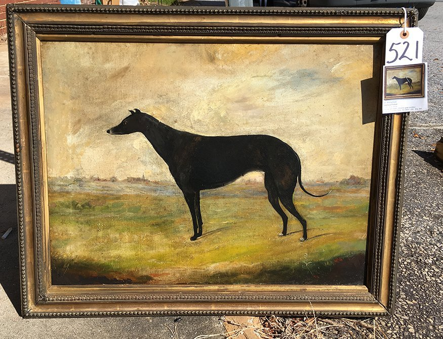 Anonymous Greyhound Portrait. - 6