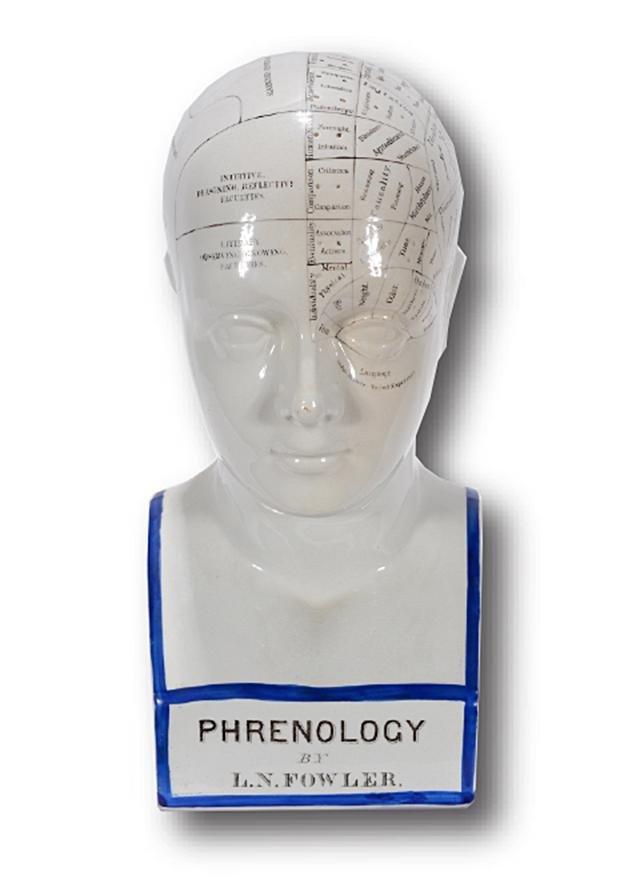 Lorenzo Niles Fowler. English Phrenology Head.