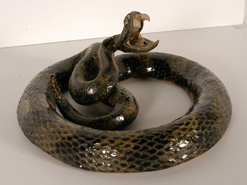 19: Michael & Melvin Crocker Rattlesnake.