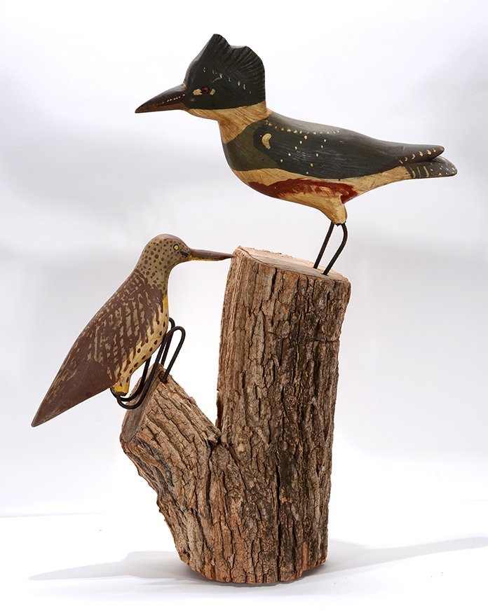 Kingfisher and Flicker on Stump.