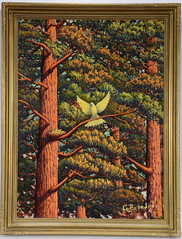 G. Bocconi. White Dove With Nest In Redwood Tree.