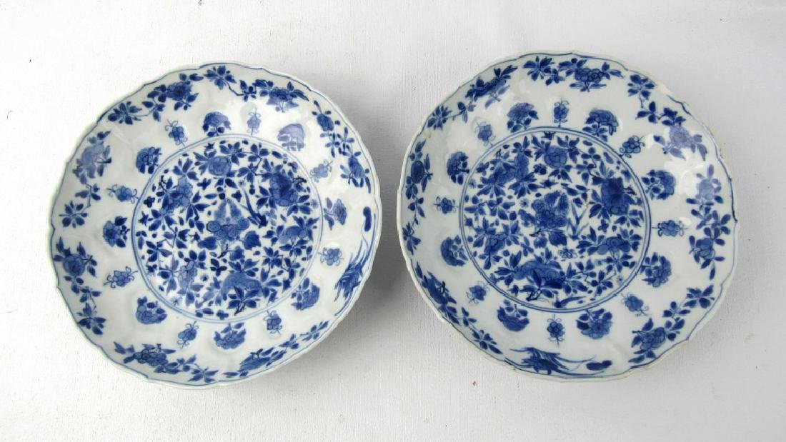 A Pair 17th Century Qing Dynasty Kangxi Blue and W