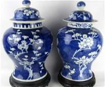 Qing Dynasty Blue & White Jars