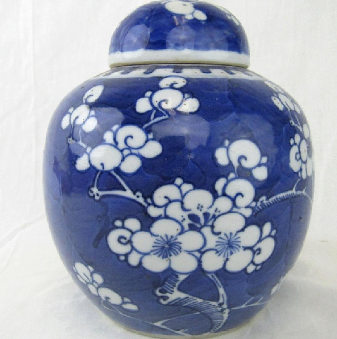 Blue and White Lidded Ginger Jars